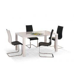 Обеденный стол RONALD 120/80/75 cm